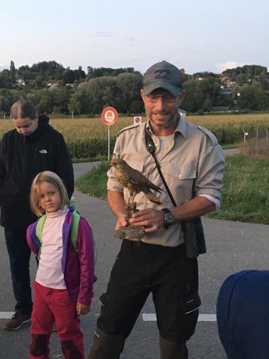 """Kurs """"Beobachten von dämmerungs- und nachtaktiven Tieren"""" (Herbst 2019)"""