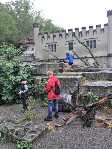 """Kurs """"Unsere Bären im Bärenpark"""" (Sommer 2019)"""