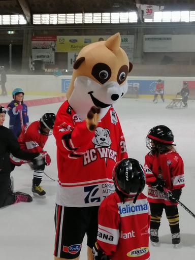 """Kurs """"Eishockey-Schnupperwoche"""" (Herbst 2020)"""