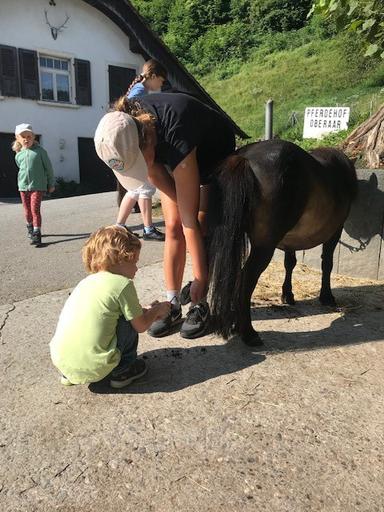 "Kurs ""Pony-Kurs"" (Sommer 2019)"
